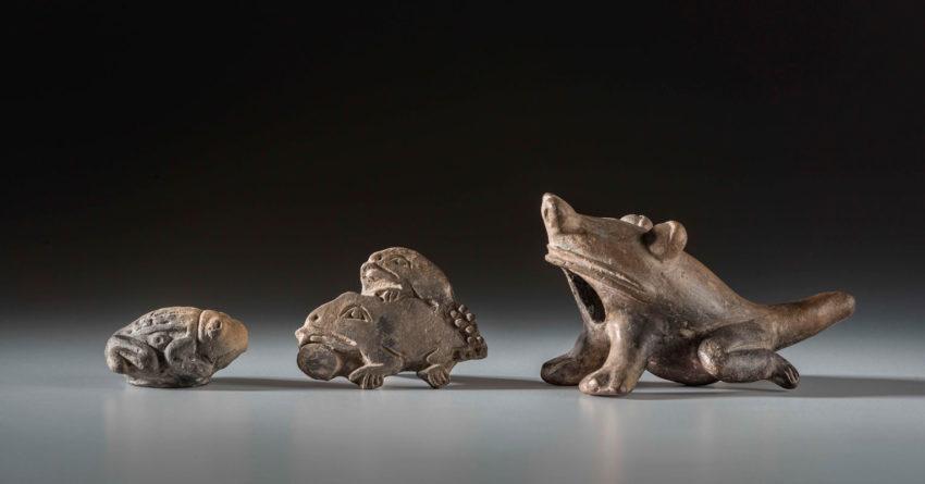 Representaciones de sapos y ranas Jama Coaque (500 a.C- 400 d.C) y Manteño-Huancavilca (400- 1532) Cerámica