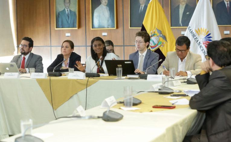 La fiscal Diana Salazar estuvo en la comisión de Fiscalización para explicar los detalles de la investigación del caso Arroz Verde.