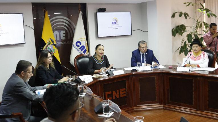 El Pleno del CNE aprobó la entrega de formularios para recolección de firmas al Comité por la Institucionalización, el 29 de agosto del 2019.