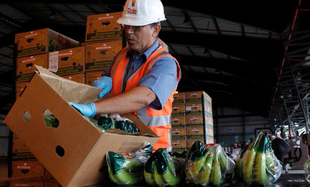 Procarsa anuncia la emisión de USD 1,7 millones de papel comercial