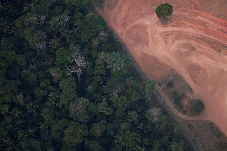 Imagen aérea de la deforestación en la zona de Puerto Viejo, estado de Rondonia.
