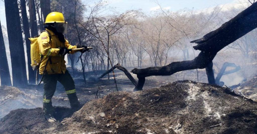 Tres incendios forestales se reportan en las afueras de Quito
