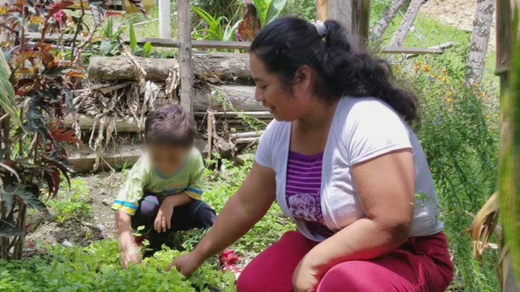 Más de un millón de ecuatorianos recibe ayuda económica del Estado