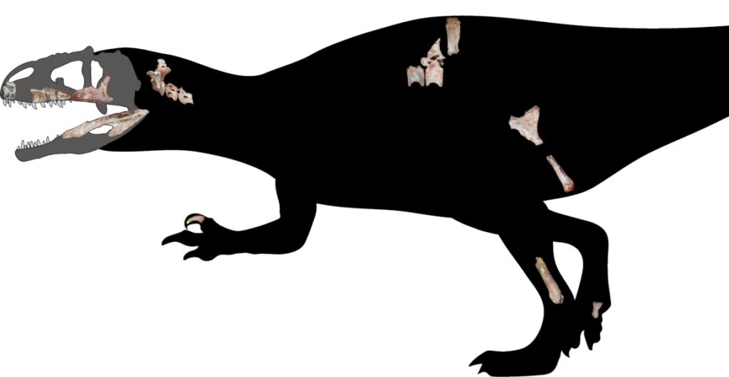 Fósiles de dinosaurio con dientes de tiburón
