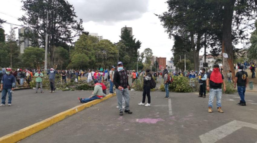 Manifestantes bloquean las vías con árboles cortados.