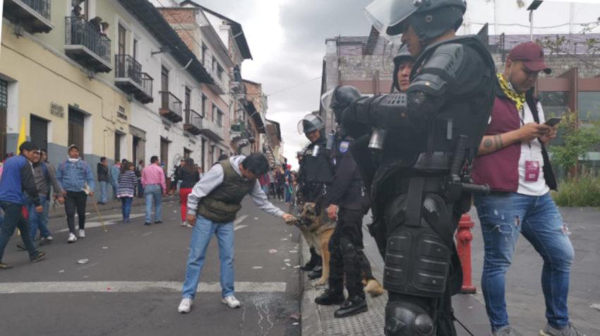 Aron, un pastor alemán de la Policía, daba la pata a los manifestantes.