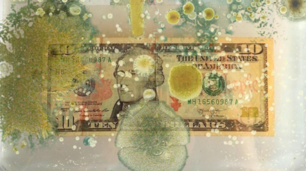 Bacterias, billetes y arte, la idea del científico Kein Rinaldo