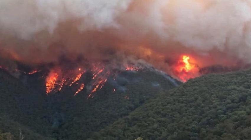 Foto aérea de un frente de los incendios forestales que afectan al estado de Nueva Gales del sur, en Australia.