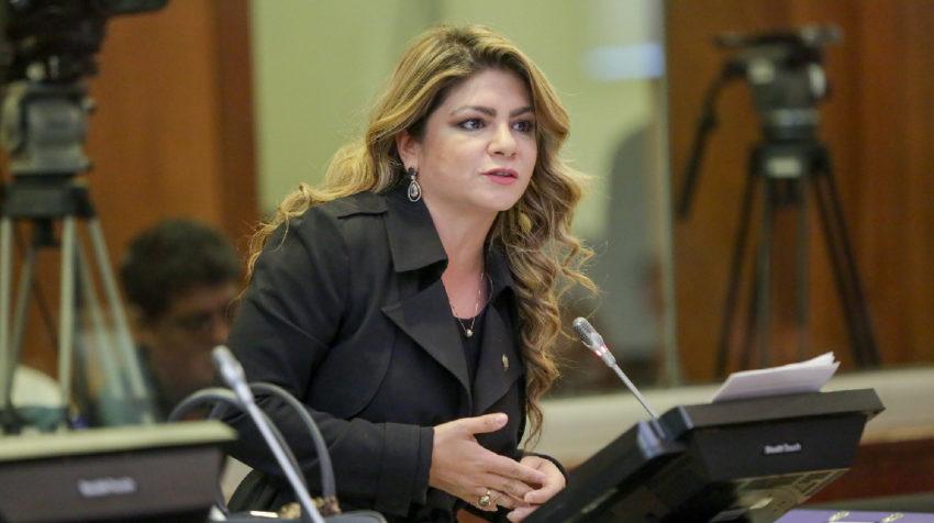 La asambleísta Pinuccia Colamarco, alterna de Daniel Mendoza (AP).