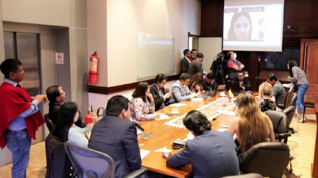 Ministra confirma importación de 2 millones de pruebas de Covid-19