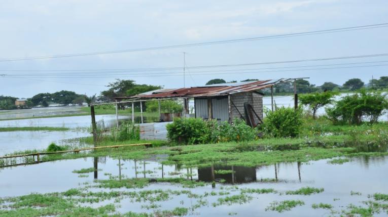El sector de Las Maravillas, en el cantón Santa Lucía (Guayas), sufrió una inundación por el desbordamiento del río Daule.