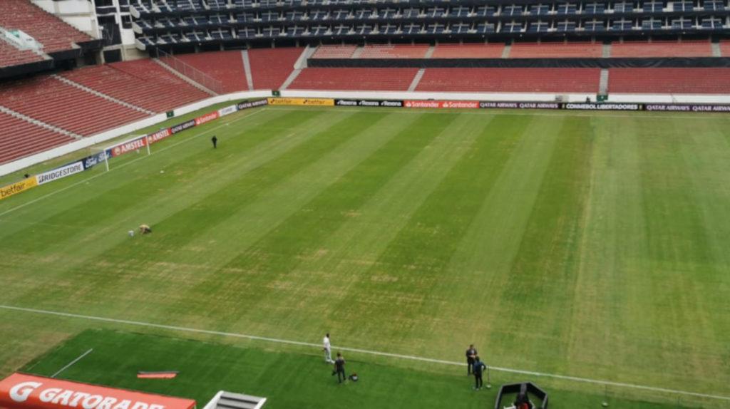 El césped del estadio de Liga de Quito se recupera de una plaga de gusanos