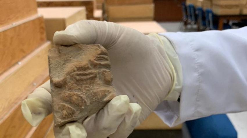 Una de las piezas de la colección arqueológica de la cultura Valdivia, en junio de 2020.