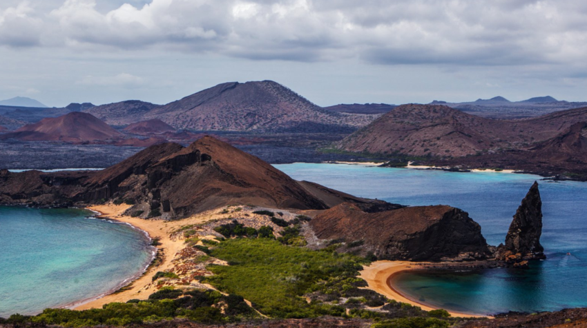 La ministra de Turismo indicó que hay una iniciada recuperación en Galápagos, a donde están llegando 1.300 turistas al mes.