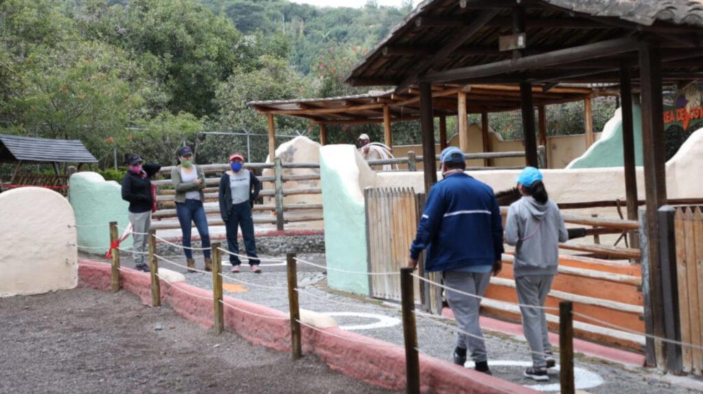 Zoológico de Quito reabre sus puertas, luego de 110 días