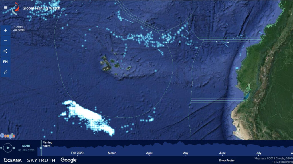 Embajador de China: 350 barcos pescan calamar cerca de Galápagos