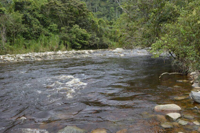 Una vista del río Quimi, en Zamora Chinchipe, en julio de 2017.