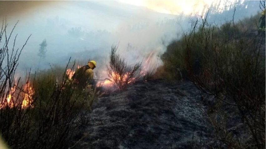 Grupo táctico del Cuerpo de Bomberos de Quito controló la linea de fuego registrada en el cerro Ilaló, el 5 de agosto de 2020.