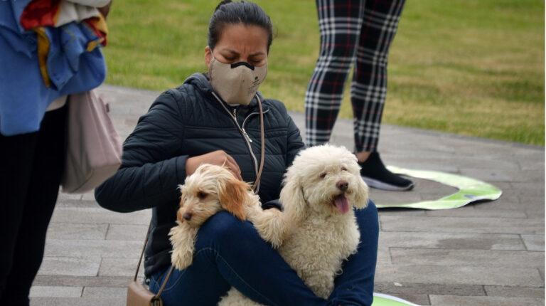 El 52% de arrendatarios ecuatorianos busca un hogar 'pet friendly'