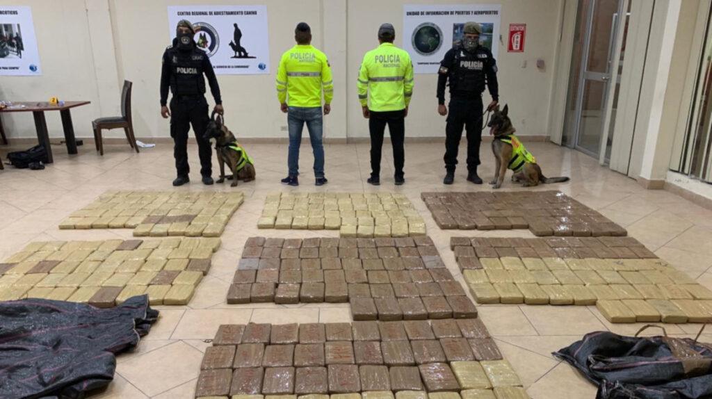 Perro detecta 376 kilogramos de cocaína en el puerto de Guayaquil