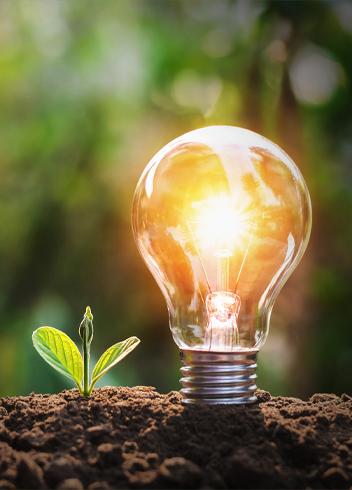 ¿Cómo construir la sostenibilidad empresarial?
