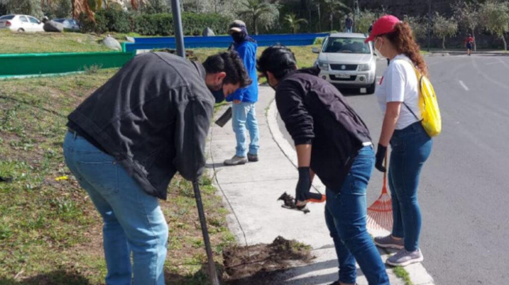 Jóvenes sancionados por beber en la vía pública hacen trabajo comunitario