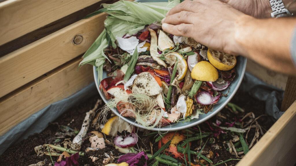 Bioconversión: darle valor agregado a los desechos orgánicos