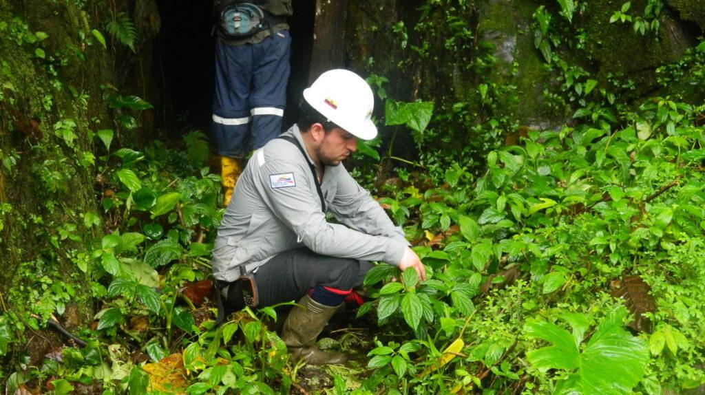 Controversia legal por el futuro minero en un bosque de Imbabura