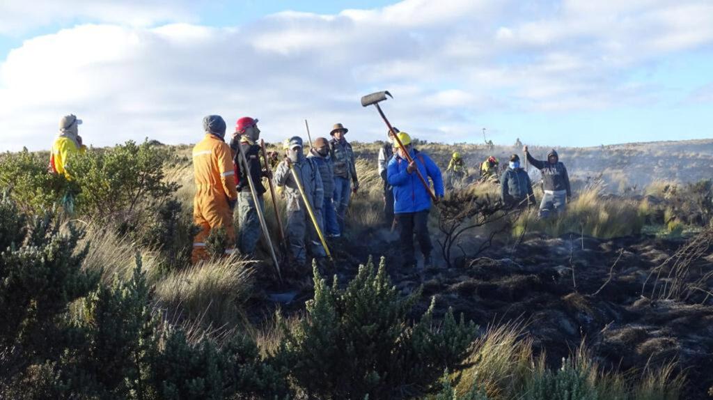 Incendio en la reserva Antisana fue controlado tras tres días