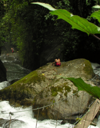 La biodiversidad en Mindo