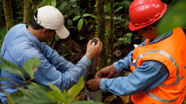 Personal de la Empresa Nacional Minera (Enami) realiza un monitoreo del suelo, en junio de 2015.