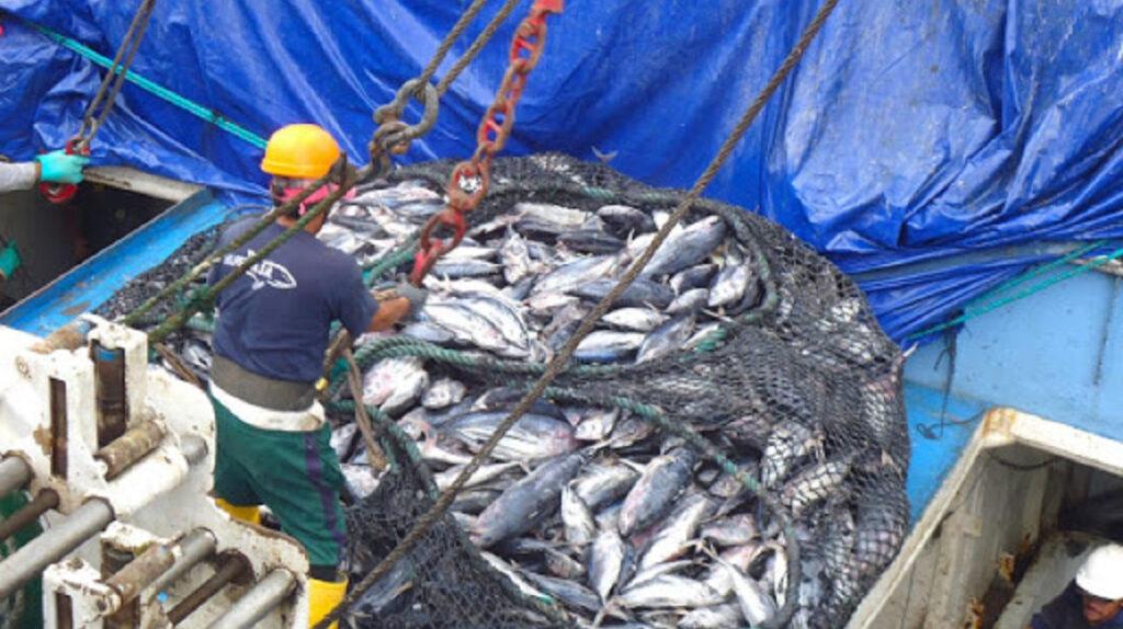 Ecuador responde a China tras suspensión de empresa pesquera