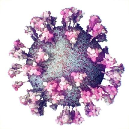 Imagen real del Sars-Cov-2 en tercera dimensión.
