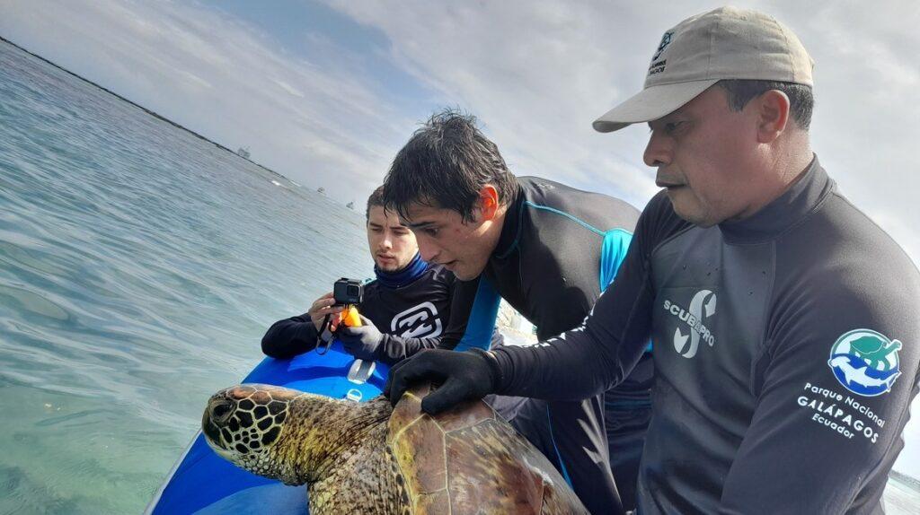 'A. espinozai', el nuevo pez bautizado en honor al investigador Eduardo Espinoza