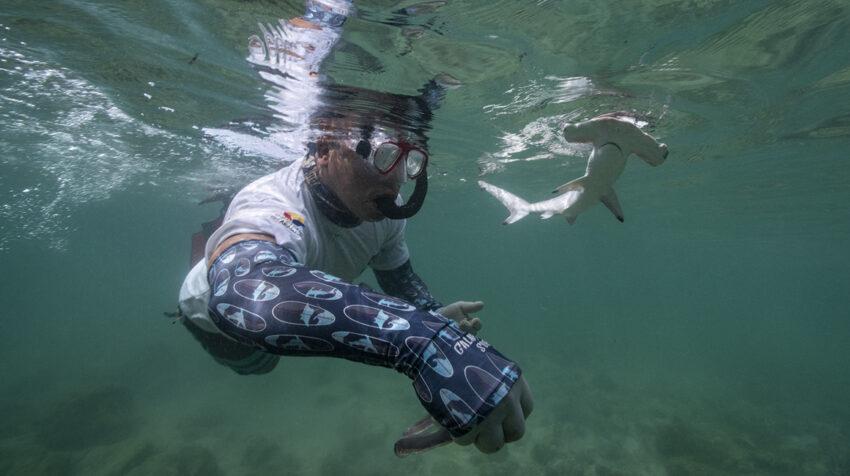 Mauricio Espinoza monitoreando tiburones en Galápagos.
