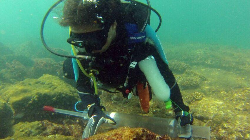 Investigador en busca de la nueva especie en Galápagos.