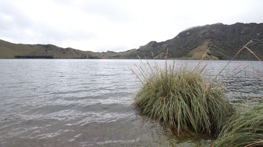 Área Ecológica de Conservación Municipal Mazán.