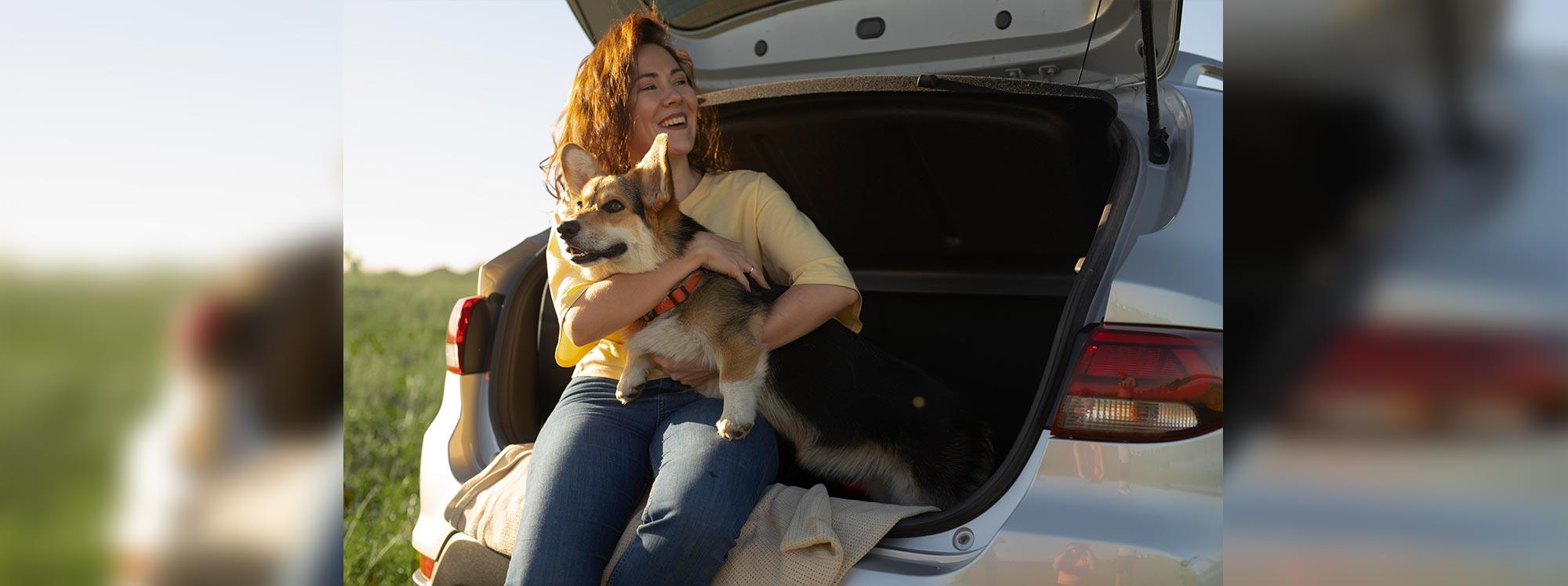 De paseo en auto con la mascota