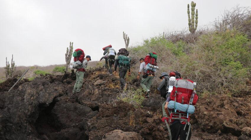 Parte del equipo de la expedición que participó en la búsqueda de las iguanas rosadas en el volcán Wolf.