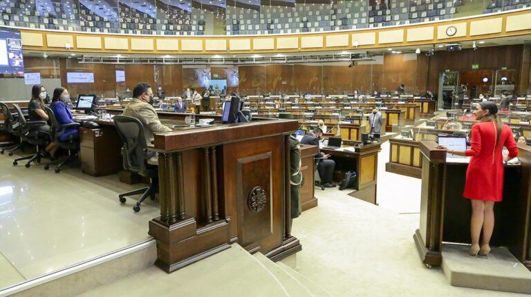 La ministra de Agricultura, Tanlly Vera, compareció ante la Asamblea este 7 de septiembre de 2021.