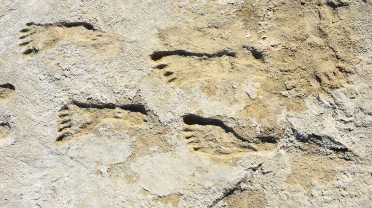 Huellas en Nuevo México indican presencia humana en América hace 23.000 años