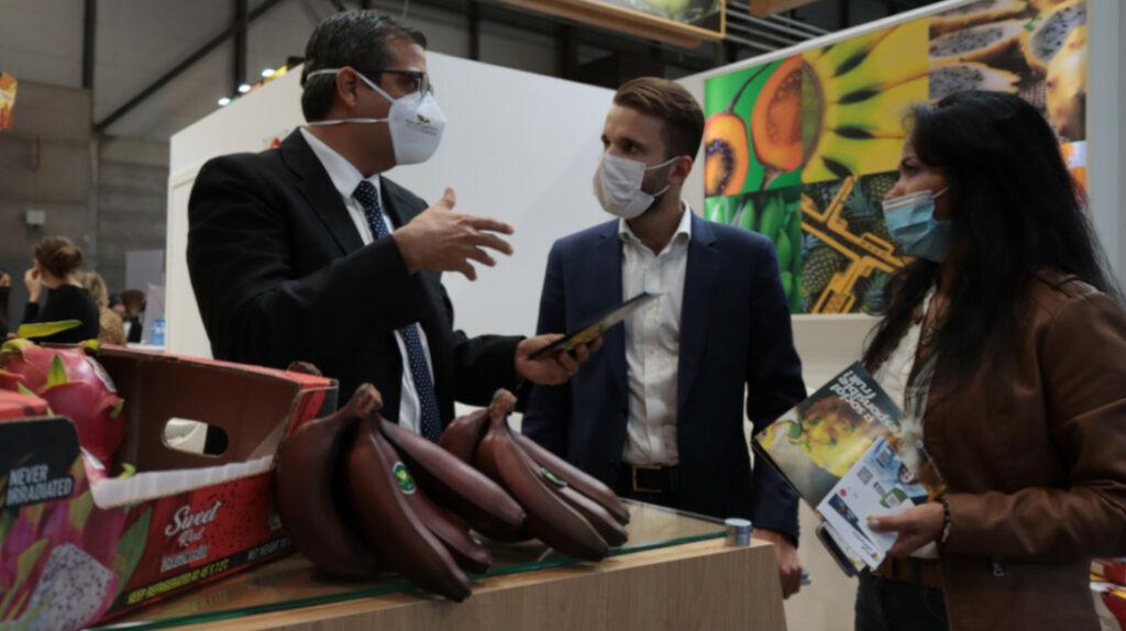 Bananeros esperan nuevo precio oficial para cerrar negocios en Europa